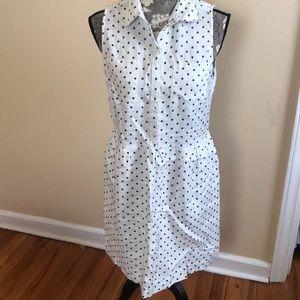 EUC Ann Taylor LOFT linen polka dot dress